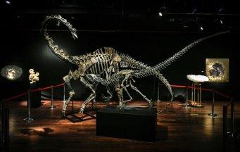 dinosaur for sale