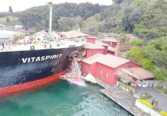 ship hits yalı